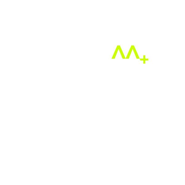 Austrian Apparel - AAplus (LP)